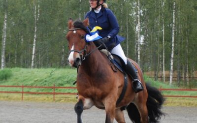 Resultat SM Bästa Allroundhäst