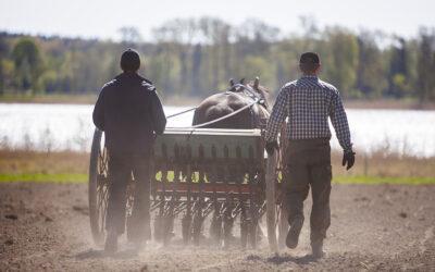 Enkät till hästverksamheter