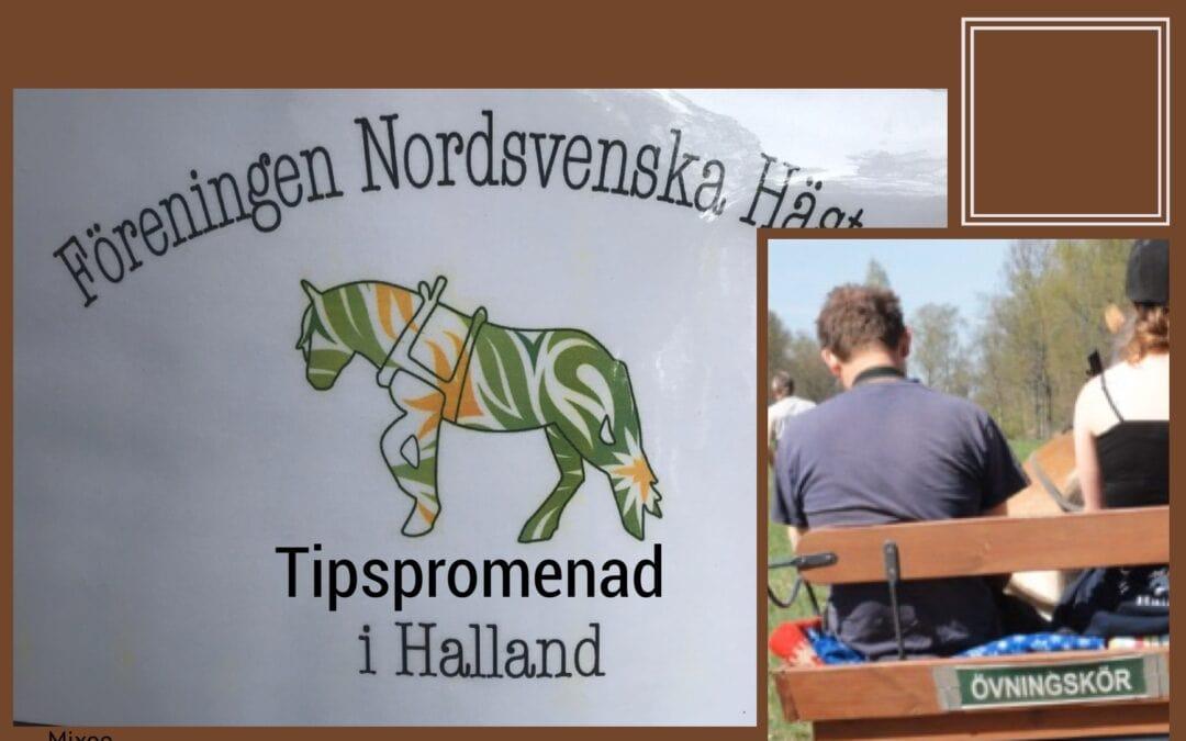 Tipspromenad i Simlångsdalen