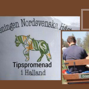 Tipspromenad